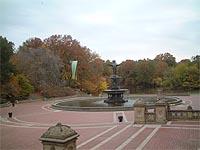 寒いセントラルパーク