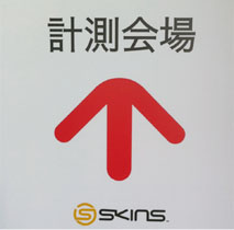 SKINS測定
